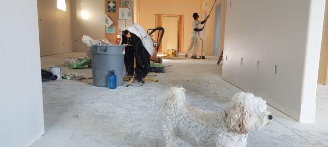 Lån penge til renovering af hus