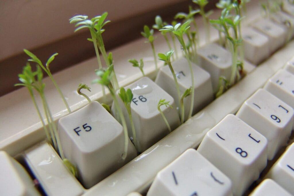 Gør computerfingrene grønne